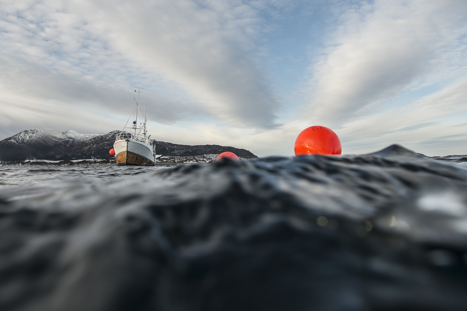Polyform buoy with Actin Adventure boat (c) vasco pinhol, 2018